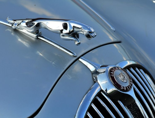 The History of Jaguar