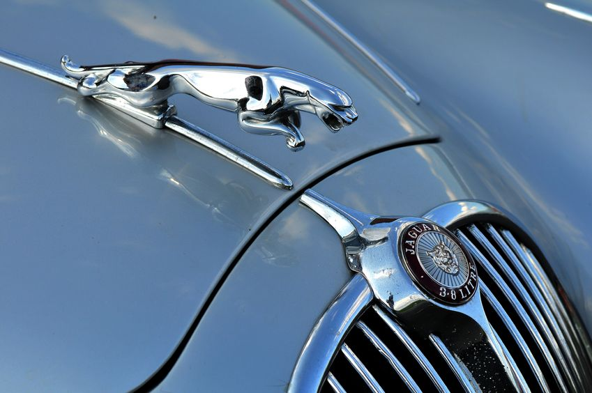 The History Of Jaguar